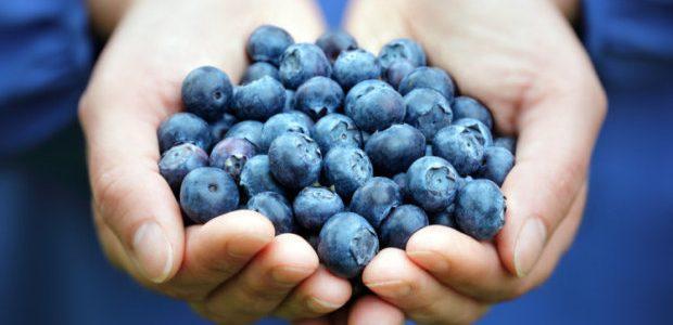 Mėlynės ir jų nauda sveikatai